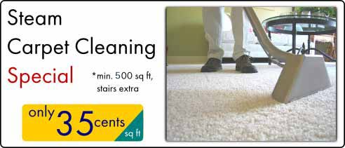 carpet cleaning coupon 2one room cleaning coupon